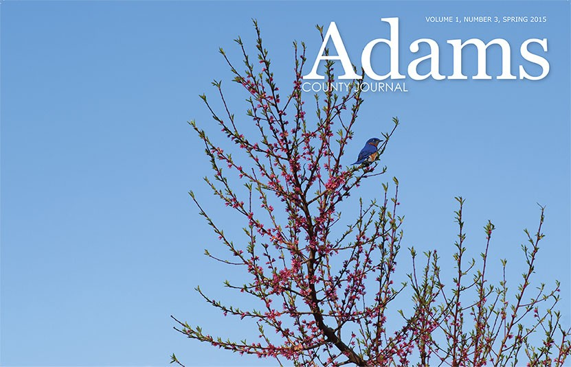 Adams County Journal cover